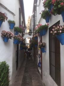 L'ancienne Cordoue, et en particulier le quartier juif, ont conservé le style des villages andalous - DR : J.-P.C.