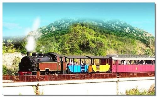Cévennes : le Train à Vapeur siffle ses 20 ans