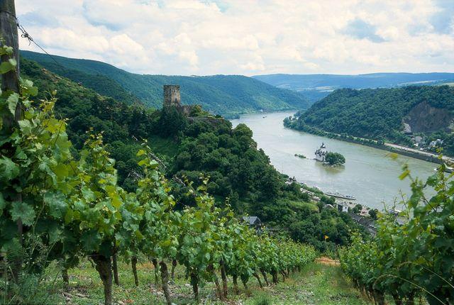L'Allemagne veut profiter de ses vignobles, comme celui de Mittelrheintal en photo ci-dessus, pour séduire les voyageurs - DR