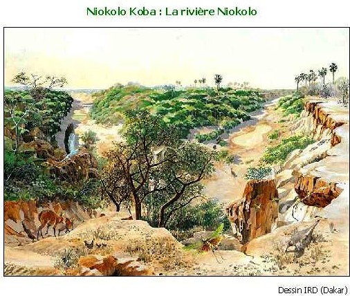 Sénégal : réhabilitation du Parc National du Niokolo-Koba