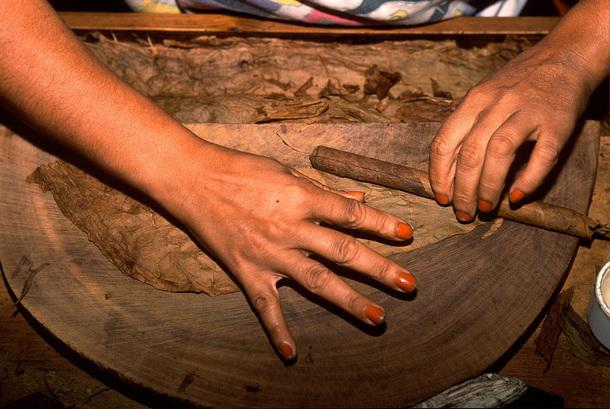 Le Procigar Festival est l'occasion pour les participants de choisir entre diverses options : des visites d'usines à cigares et tabac aux randonnées sur les plantations, mais aussi séminaires, tables rondes, confection de son propre cigare à la fabrique - DR