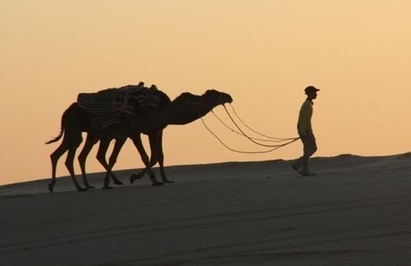 CETO : Afrique du Nord et Moyen Orient poursuivent leur dégringolade