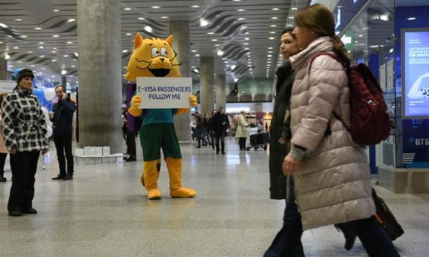 Photo: St-Petersburg Pulkovo Airport