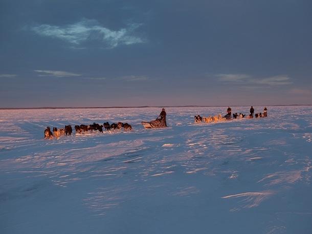 Avec Expeditions Unlimited, il est possible de suivre un aventurier dans l'une de ses expéditions - Photo DR