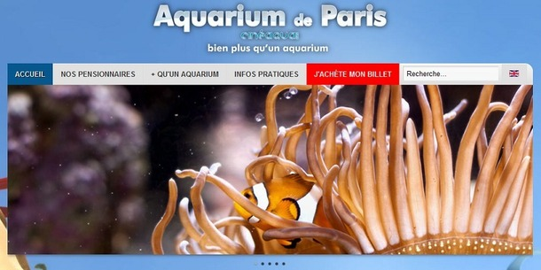 Capture d'écran du nouveau site Internet de l'Aquarium de Paris - DR