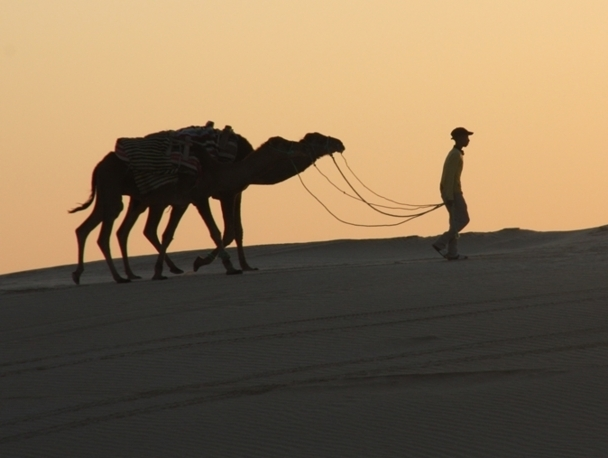 Dans le Sud tunisien, plus particulièrement, le tourisme est une denrée vitale pour la population. /photo JDL
