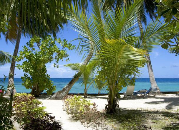 Les clients auront du choix pour partir en vacances en juillet et en août. Les VDM sont plébiscitées. Photo Fotolia DR