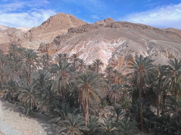 La région du sud tunisien est particulièrement aride, ce qui limite la construction d'infrastructures consommatrices d'eau. Mouna Mallek , CC BY-SA