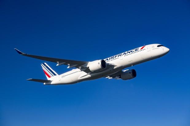 Ce programme de vols représentera environ 15% de la capacité déployée habituellement à cette période et sera assuré par 75 appareils de la flotte d'Air France - Crédits photos : Airbus SAS