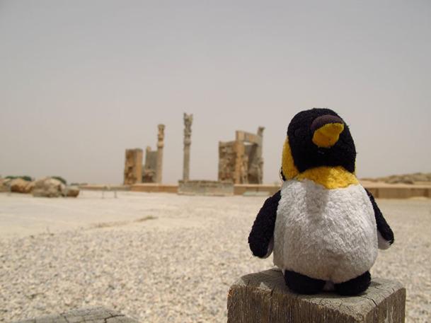 """F.Véteau : """"A l'origine, Monsieur Pingouin est une petite peluche qui m'a suivie durant 10 ans. C'est pour cela que j'ai donné son nom à mon agence de voyages"""". - DR : Monsieur Pingouin"""
