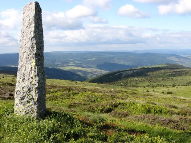 Dans le massif du Mont Lozère, on est comme plongé hors du temps - DR : Languedoc Nature