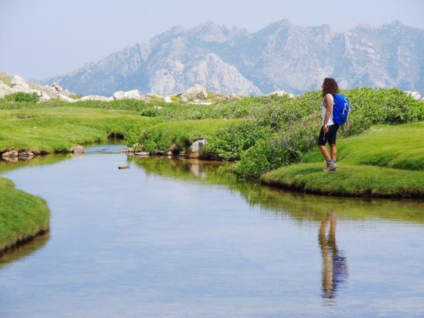 """Un parc naturel qui recouvre près de 40 % de l'""""Ile verte"""". Alex Zappa."""