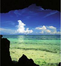 Petit paradis à Zanzibar - DR : Aya