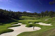 © Golf de Terre Blanche