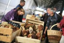 Champignons (cèpes) sur le marché du Quai du roi, à Orléans © M. Perreau - CRT Centre-Val de Loire