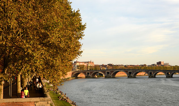 Toulouse - DR Patrice THEBAULT, CRT Occitanie