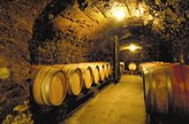 Caves Duclau à Tupin (69), © Inter Rhône/I. Desarzens