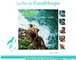 Les Îles de Guadeloupe lance leur nouveau site Internet
