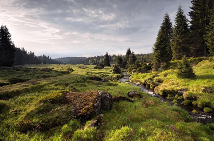 Parc national de Sumava - DR CzechTourism Pavel Ourednik