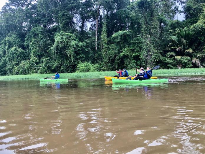 Le kayak dans les canaux qui parsèment la forêt tropicale /crédit JDL