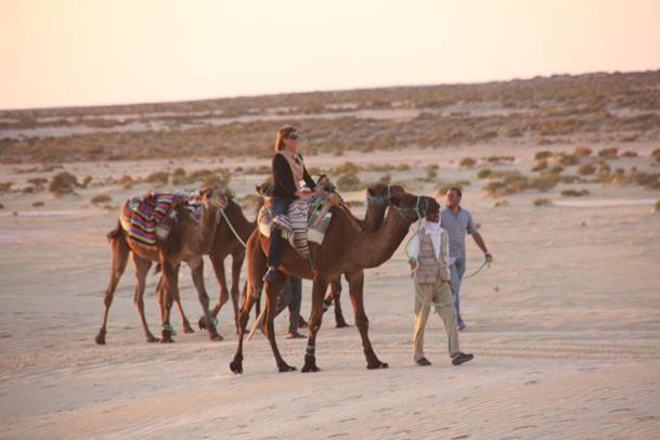 Même si cela nous chagrine, arrêtons enfin de nous leurrer. Dans la conjoncture présente, aggravée par la guerre au Mali et l'assassinat du leader laïque tunisien, Chokri Belaïd, il devient stupide de nier que la violence augmente fatalement les risques des touristes occidentaux en Tunisie - DR : JDL