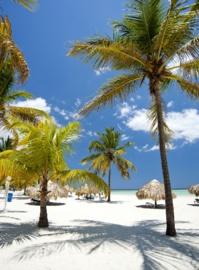 Couverture médicale gratuite : la République Dominicaine prolonge la mesure jusqu'en avril 2021