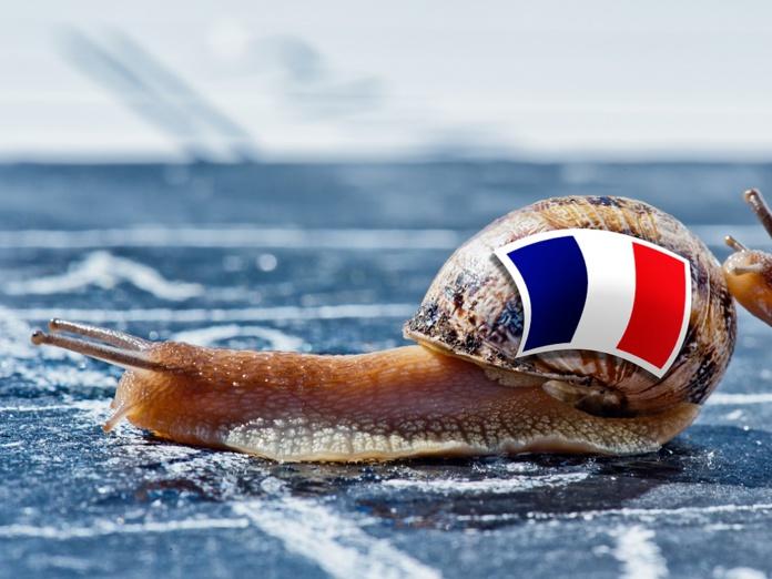 Avec une campagne au ralenti, Jean-François Rial n'entrevoit une sortie de crise que pour la fin 2021 - Crédit photo : Dépositphotos @Pixinooo
