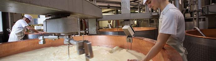 La fabrication du fameux Comté tous les matins de l'année dans les fruitières - ©fromagerie du mont d'or