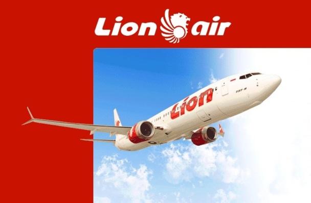 Bruxelles et ses énarques européens ont en effet émis les doutes les plus sérieux sur ces Lions, à tel point que la compagnie figure sur la liste noire des compagnies aériennes pour ce qui concerne la sécurité…