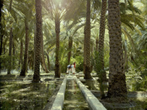 Al Ain Oasis © Abu Dhabi Department of Culture and Tourism