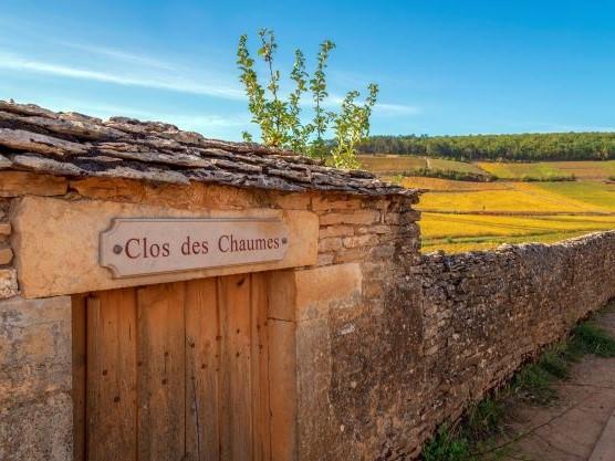 Vignoble Côte de Beaune. Clos des Chaumes - Photo Alain Doiré, Bourgogne-Franche-Comté Tourisme