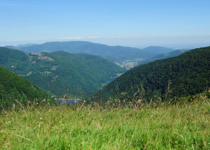 Ballon d'Alsace, Parc Régional des Vosges - Photo Vincent Thiebaut/ Belfort Tourisme