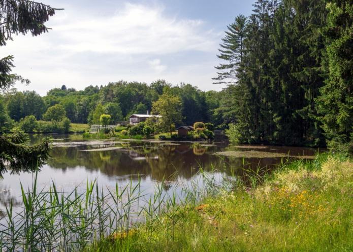 Sur le plateau des Mille Etangs dans les Vosges du Sud - Photo Alain Doiré / Bourgogne-Franche-Comté Tourisme