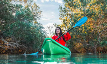 Parc National des Mangroves © Abu Dhabi Department of Culture and Tourism