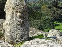 © La Corse des origines / Menhir au milieu des oliviers centenaires de Filitosa