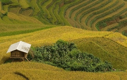 Réceptif : Nature Vietnam lance un nouveau trek exclusif dans le nord ouest