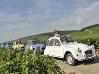 Balade à la queue leu leu dans les vignes en 2CV © Alain Doire / Bourgogne Tourisme Franche Comté