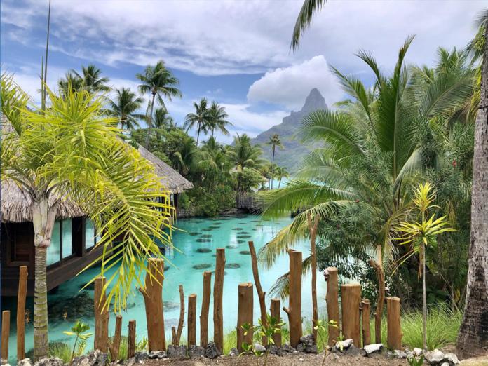"""""""La situation financière des entreprises du tourisme polynésien est aujourd'hui critique et des milliers d'emplois sont menacés à très court terme."""" - Photo JDL"""
