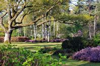 © Jean-François Grossin - Arboretum des Grandes Bruyères