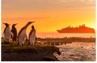Croisière en Antarctique - DR