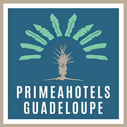 La Guadeloupe en liberté : comment vous aider à réserver sans aucun souci ni formalisme !