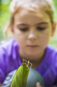 © ABrusini - Tiens tiens une sauterelle !