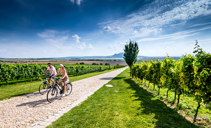Vignes à vélo © Petr Slavik / CzechTourism
