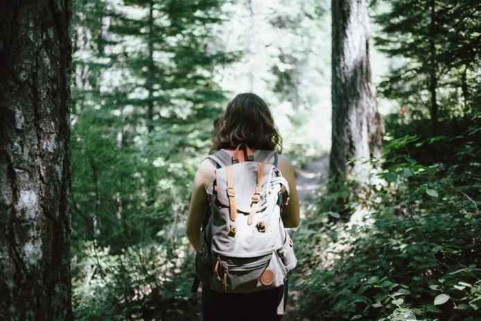 Marcher dans les bois pour laisser les contraintes derrière soi. Jake Melara/Unsplash