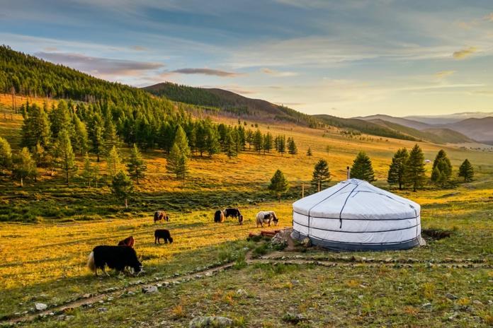 Ouverture des frontières et présentation du e-Visa Mongolie © Adobe Stock