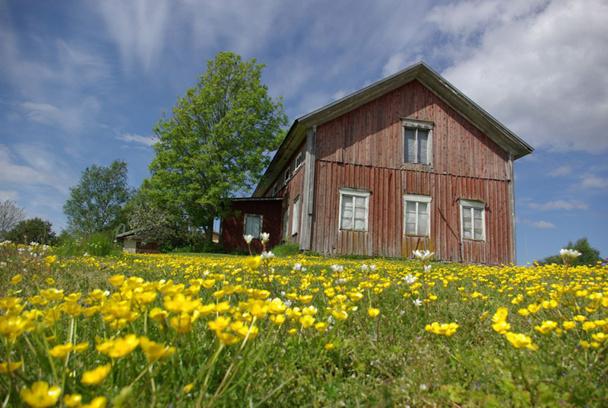 Au sud ouest de la Finlande flotte un air de campagne entre les grandes maisons aux bardages de bois, sous l'incomparable silence des îles - DR