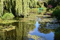 Jardin d'eau de Claude Monet © Ariane Cauderlier