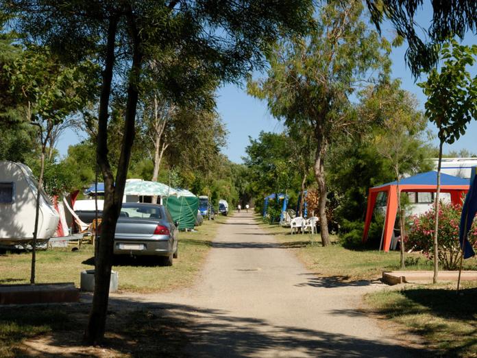 """Nicolas Dayot : """"Si nous faisons un ratio sur les 7800 campings présents en France, seuls 0,30% des établissements de plein air ont eu un début de cluster depuis le début de l'été.  C'est très faible et cela démontre à quel point il faut être sérieux"""" - Depositphotos.com  Auteur philipus"""