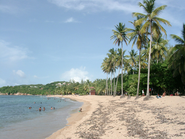 L'année 2013 va se poursuivre par un sacré défi, celui de soutenir les vols de XL Airways sur ses destinations en phase de démarrage que sont la Guadeloupe et la Martinique et la Réunion, ainsi que sur la République Dominicaine - DR : JDL