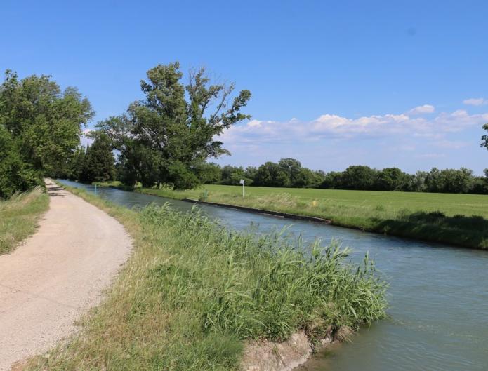 Les agriculteurs cultivent la partie irriguée de la Crau, transformée dès le 16e siècle grâce à un ingénieux système de canaux - DR : J.-F.R.